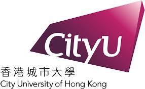 The speaker works for City University of Hong Kong